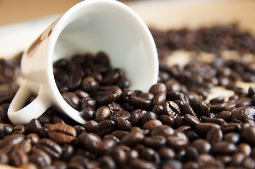 Kaffee gibt es nicht immer im Survival Trip
